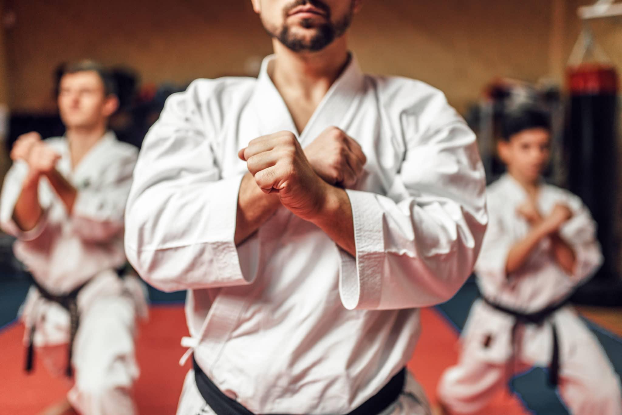 New Vision Martial Arts Programs image